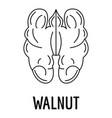 walnut icon outline style vector image vector image