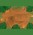 wooden banner with tropical leafs vector image vector image