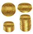 a golden bitcoin on a white vector image