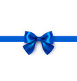 beautiful blue bow isolated on white background vector image vector image