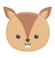 cute little squirrel head animal cartoon vector image vector image