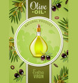 extra virgin olive oil poster vector image vector image
