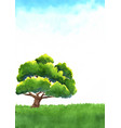 giant tree on green meadow with sky background vector image