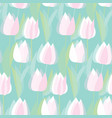 modern abstract white tulip flowers pattern vector image