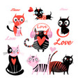 set funny loving cats vector image vector image