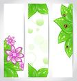 Set of bio concept design eco friendly banners vector image