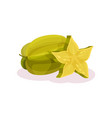 whole and slice of ripe carambola juicy exotic vector image vector image