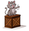 A cat above the box vector image vector image