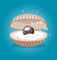 black pearl in sea shell vector image