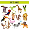 Cartoon Set of Cute Animals monkey lion Zebra vector image vector image
