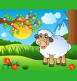cute sheep on spring meadow vector image