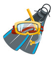 diving mask and snorkel with flippers vector image