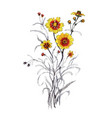 hand drawn yellow flower isolated on white vector image vector image
