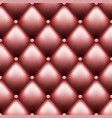 leather upholstery with buttons luxury background vector image