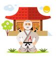 ninja and dojo flat style colorful cartoon vector image vector image