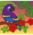 parrot on branch with flowers vector image vector image