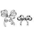 ribbon bows hand drawn doodle vector image
