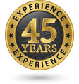 45 years experience gold label vector image vector image