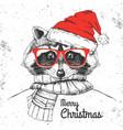 christmas hipster fashion animal raccoon vector image vector image