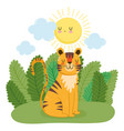 cute tiger sitting on grass sun forest nature wild vector image vector image