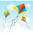 Fly Kite Summer Background vector image vector image