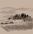 italy landscape hills and cypresses vector image
