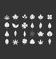 leaf icon set grey vector image