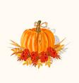 orange big pumpkin with autumn leaves vector image vector image