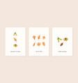 set autumn mood modern greeting card template vector image vector image