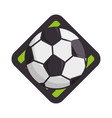 soccer or football sport vector image vector image