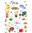 tea watercolor hand painting set vector image