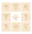 a set logos egyptian lotus flower vector image vector image
