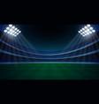 stadium with illumination vector image vector image