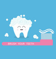 tooth icon brush your teeth big toothbrush with vector image vector image