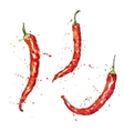 watercolor red chili peppers vector image vector image
