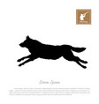 black silhouette of a running wolf vector image