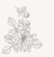 flowers bouquet in vintage beige line vector image