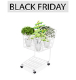 Green Trees in Black Friday Shopping Cart vector image vector image