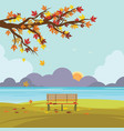 bench in autumn park with fall leaves vector image