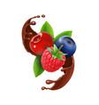 berries in chocolate splash realistic vector image vector image