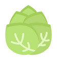 cabbage flat icon vegetable and diet vector image