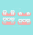 dental bridge setting tooth stomatology vector image