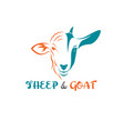 sheep face and goat face on a white background vector image vector image
