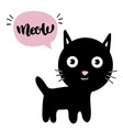 little black kitten isolated vector image