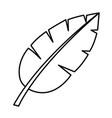 tropical palm leaf cartoon vector image