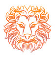 colorful sketch of lion head vector image