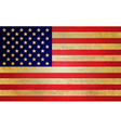 Usa Flag vector image