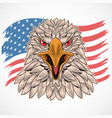 eagle usa flag vector image vector image