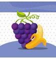 fruits fresh organic healthy grapes banana vector image