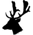 head of deer vector image vector image